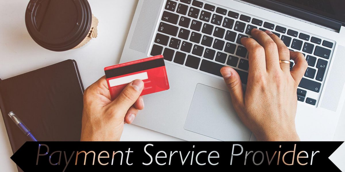 Payment Service Provider (PSP) License in Georgia / No Capital Required and Bitcoin and Crypto Allowed